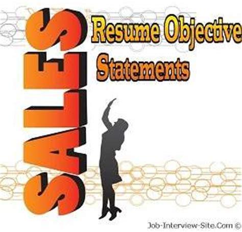 PROFESSIONAL SUMMARY Sales Management Executive